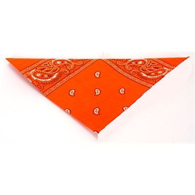 Paisley Bandannas - Orange